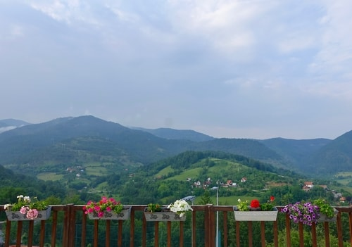 Flowers and mountains in Mokra Gora
