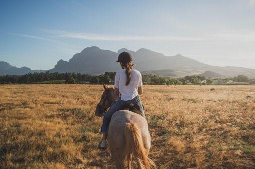 Horse riding tour